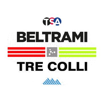 logo team beltrami.png